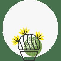Plant Renovation