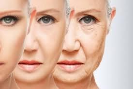 ProAging - блокирование всех факторов старения клетки изнутри и снаружи