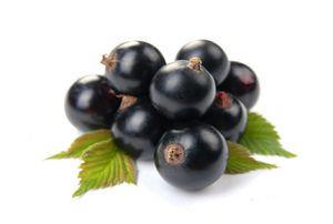 Пудра черной смородины