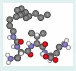 SYN Hycan - syn hycan 1 - 1